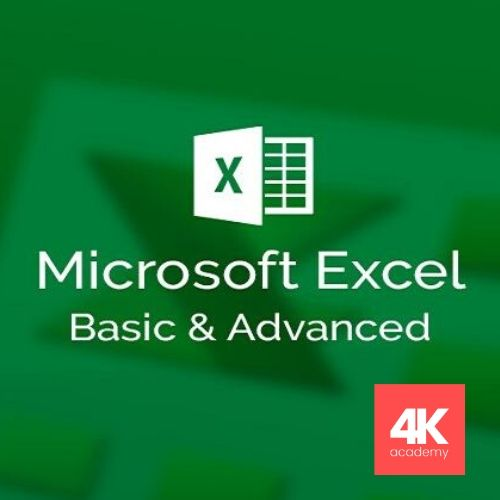 Essentials to Advanced Excel